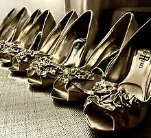 Wedding Shoes - The Line Up by StefanieT