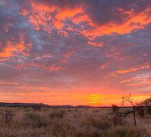 Red sky at night a safari delight by John Banks