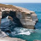 Arch at Tunnel Beach by Werner Padarin