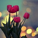 Tulips in twilight by Yuliya Art