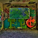 Graffiti Room with Forest View by njordphoto