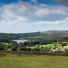 Dartmoor: Sheepstor Village, Burrator Reservoir, Devon UK. by DonDavisUK