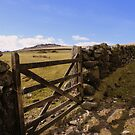 Dartmoor: Gateway by Rob Parsons