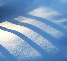 Shadows on the Snow by Ritva Ikonen