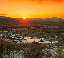 A Wicklow Winter Sunset by Martina Fagan