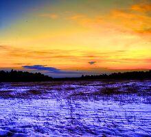 Snow Farm - HDR by Trenton Purdy