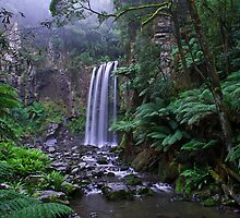 Hopetoun Falls  by Mieke Boynton