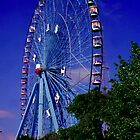 Ferris Wheel by Mary Campbell