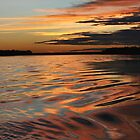 Amazonian sunset by Robin Loveridge