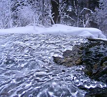 Natures Ice Abstract by Barrie Daniels