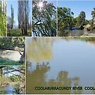Coolaburrugundy River Coolah NSW by Julie Sherlock