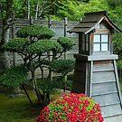 Portland Japanese Garden by Marjorie Wallace