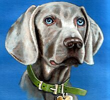 MONTY  WEIMERANER  (GHOST DOG) by james thomas richardson