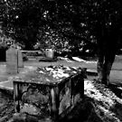 St Mary's Graveyard [2] - Kirkby Lonsdale, Cumbria by PhotogeniquE IPA