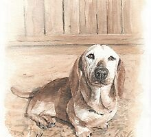 Bassett hound watercolor by Mike Theuer