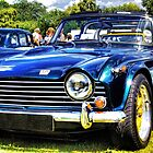 Triumph TR5 by Mick Smith