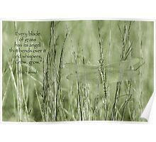 Grow, grow . . . Poster