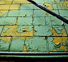 peeling reveals the beauty! by Lynne Prestebak