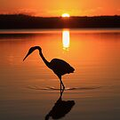 There Is Only This Moment ! -Lake Weyba SE Queensland by AMP  Al Melville Photography