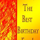 Best Birthday Ever - Red& Yellow by TLCGraphics