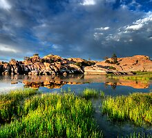 Bright Lights, Big Rocks by Bob Larson