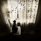 Song of the Blackbird by Jennifer S.