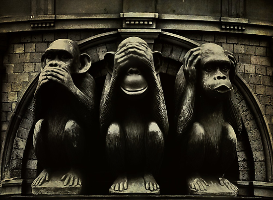 Three Wise Monkeys by Trish Woodford