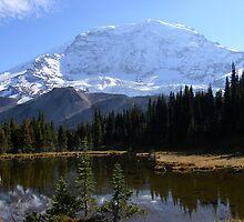 Willis wall - Mt. Rainier by hiker