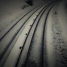 Tracks by trbrg