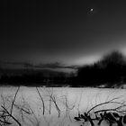Frozen Brickcroft by Ben Malcolm