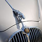 Jaguar mark 2 bonnet grill & symbol by buttonpresser