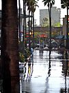 Zooming the Wet Plaza - San Diego - California © 2010 by Jack McCabe