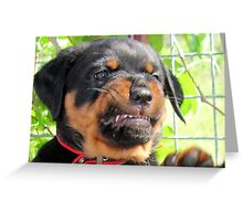P.M.S. aka Puppy Makes Snarl Greeting Card