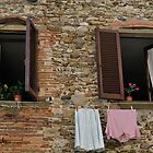 Italian Windows by Tom Grieve