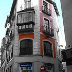 un poco de color en la esquina by GuyAmazed