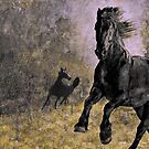 Horse 9 by Jeff Burgess