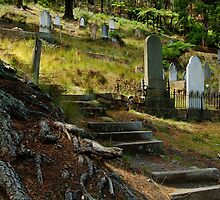 Walhalla Cemetery by Joe Mortelliti