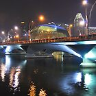Singapore by night 4 by Adri  Padmos