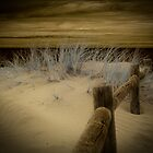Cape Burney ~ Geraldton, WA by Pene Stevens