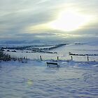 Viewpoint in the snow by Tazfiend