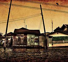 The flood by Dane Walker
