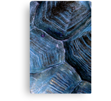Blue Tortoise Shell Canvas Print