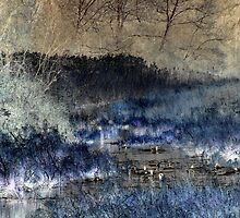 Etched Marshes by Kelly Marszycki