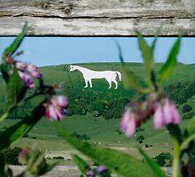 Westbury White Horse by LisaRoberts