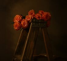 renaissance roses  by janetlee