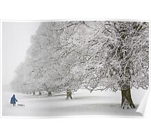Snow on Beverley Westwood Poster