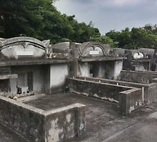 Okinawan Tombs by J J  Everson