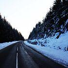 Winter road trip by Mimi-93