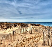 Race Point Beach by Monica M. Scanlan