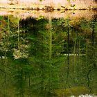 Reflection...mirror...mirror by KellyEverill